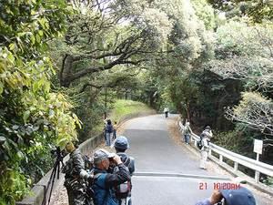 DSC07048-S-thumbnail2.jpg